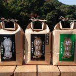 穂田琉のお米